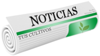 Newsletter Fertilizantes Polecam